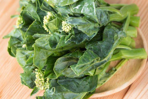 Brassica oleracea alboglabra (Choux)